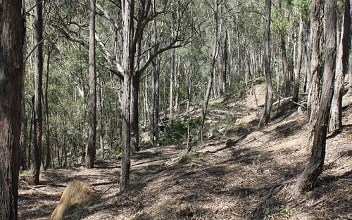 Lot 103 Araluen Road, Araluen NSW