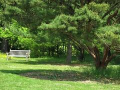 Cylburn Arboretum ~ HBM! (karma (Karen)) Tags: trees shadows maryland baltimore benches hbm cylburn 4spring arboretums benchmondays