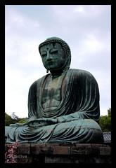Ktoku-in Daibutsu (CastaDiva) Tags: japan buddha kamakura religion journey zen daibutsu oriente meditation viaggio giappone ktokuin