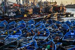 barche in Maghreb (io.robin) Tags: blu barche porto marocco maghreb pesca moroco essaouira golfo pescherecci