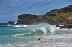 Body Boarding at Sandy's (Kanalu Chock) Tags: hawaii surfing bodyboarding sandybeach