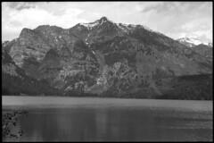 2016-07-02-0085 (Cosmic Ray's) Tags: blackandwhite nature olympus 35mmfilm vintagecamera wyoming tetons nationalparks americanwest jacksonhole grandtetonnationalpark usnationalparks phelpslake jacksonwy omsystem