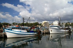 IMG_5490 Boats - Sydney Fish Markets (Guyro Perriman) Tags: pyrmont fishingboats sydneyfishmarkets sydneyaustralia