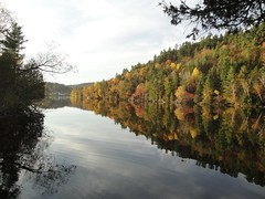 "autumn_gatineau_river • <a style=""font-size:0.8em;"" href=""http://www.flickr.com/photos/78554596@N08/7027773575/"" target=""_blank"">View on Flickr</a>"
