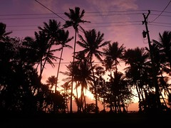 Sunrise from our house, Kosrae, Micronesia (ebuechley) Tags: ocean ecology fsm geography biology islan micronesia kosrae federatedstates