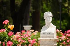 A.CANOVA (*OGGM*) Tags: flowers italy rome roma del fleurs italia nikkor antonio italie canova borghese buste pincio passeggiata sculpteur 55300 nikond5100