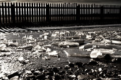 Winter (aguerocalvo) Tags: chile life winter patagonia cold ice canon landscape amazing vida 7d invierno frio hielo magallanes extrema extrem antártica theendofamerica enestaépocatodosecongela
