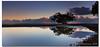 Chris' Tree (danishpm) Tags: sunrise canon wideangle brisbane qld 1020mm manfrotto sigmalens southeastqueensland nudgeebeach eos450d 450d sorenmartensen hitechgradfilters 09ndreversegradfilters