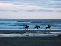 Riders on the Storm (misiekmintus) Tags: ocean sunset sea horses usa mer beach oregon america coast us surf waves ride rider coulds horsebackriding manzanita equitation watersky