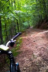 To moe w ramach urozmaicenia ... (Przemek Brzezicki) Tags: bike bicycle cycling mtb dolina karkonosze rowery szklarskaporba izery