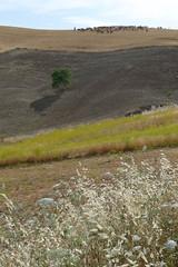 20090615_1833_1020174.jpg (m.vgunten) Tags: spain r1 andalusia lajoya flickr2009 bikeespaña picasa2009