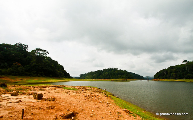 Expanse Of Water At Periyar Reservoir At Periyar Tiger Reserve, Thekkady, Kerala