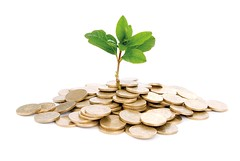 Coins and plant, isolated on white background (ricbelcher) Tags: white plant money flower tree green home nature metal silver gold golden leaf coin stem energy branch symbol market background stock aspiration grow seed progress bank cash business growth pile dollar concept savings care economic ideas success heap development investment interest currency isolated improvement loan banking wealth finance monetary earnings