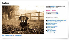 Ty made the front page!! (Dogloverlou) Tags: autumn portrait screenshot tyler explore frontpage 2012