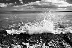 Urla e biancheggia il mar (gminguzzi) Tags: wave spash onde maestrale schiuma schizzi mareggiata flutti fortunale maremosso maremoltomosso bancheggiailmar