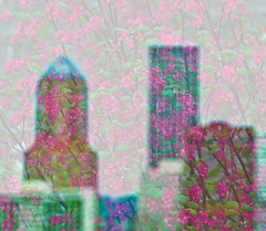 Double Dee's. (Omygodtom) Tags: flower building digital nikon dof explorer double existinglight tamron90mm doubleexposed dk7 d7000 nikond7000
