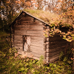 Grass on the Roof (Digikuvaaja) Tags: old autumn roof wild building history fall abandoned grass leaves wall architecture farmhouse barn rural vintage square outdoors wooden scary cabin exterior timber antique decay empty rustic ruin retro warehouse hut weathered shack aged tradition damaged deserted storehouse ramshackle olden dwelling builtstructure