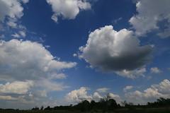Clouds II (Pascal Volk) Tags: wideangle wa ww 16mm brandenburg naturepark naturpark superwideangle sww uwa weitwinkel swa ultrawideangle havelland uww schutzgebiet protectedarea ultraweitwinkel superweitwinkel canonef1635mmf4lisusm canoneos6d glpe havelaue westhavelland