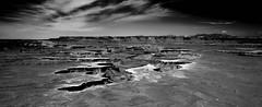 Canyonlands (Julian Luttrell) Tags: usa green landscape desert canyonlands