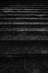 exponential - Nikon D3s & Nikon AF-S Nikkor 24mm f/1.4G ED (TORO*) Tags: park bw white black green japan ed nikon stair outdoor f14 14 step osaka 24 24mm af nikkor afs tsurumi ryokuchi f14g d3s