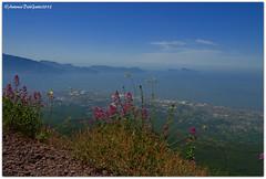 DSC_0195 (tonydg57) Tags: del torre campania napoli vesuvio vulcano pompei ercolano greco