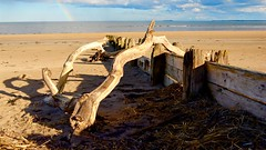 Driftwood (J @BRX) Tags: uk blue england sky beach water sunshine rain rainbow sand nikon northumberland driftwood alnmouth d5200 april2016