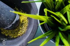 Green (Chris Haddleton Photography) Tags: food plant color colour green kitchen modern vintage nikon mortar theme d800 pestle strobist