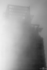 Foggy morning - No. 8 - Dubai Marina, UAE (kadryskory) Tags: city trip travel urban bw building fog architecture skyscraper outside dubai outdoor uae foggy bnw dubaimarina kadryskory