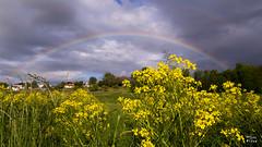 Arc-en-ciel... ciel de trane (MarKus Fotos) Tags: canon rainbow arcenciel