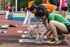 Liga de clubs de atletismo divisin de honor en Burgos el 21 de mayo de 2016 (Diego Herrera Audiovisuales) Tags: sport de athletics honor deporte mayo division burgos pista tartan atletismo atleta atletas ligue ligas