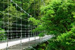 1Yamahiko Bridge (anglo10) Tags: bridge river
