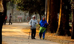 ~Dependency~ (~~ASIF~~) Tags: road morning shadow people sunlight outdoor walk together dependency canon60d