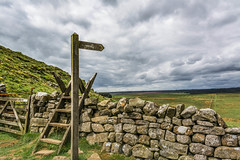 Pennine Way... (johngregory250666) Tags: camera uk blue sky cloud mist lake holiday plant water field grass sign misty wall clouds rural sunrise reflections way walking landscape outside photo nikon long roman outdoor hiking walk centre border hike trail northumberland national serene inversion ladder nikkor distance grassland footpath stile pennine hadrianswall hadrians fingerpost chollerford imagesofengland hadrienswall