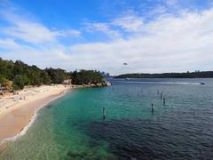 Vaucluse Bay, Sydney (Edmund Vance) Tags: olympusem5 panasonic1442ii