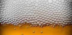 Broue (AxelBergeron) Tags: macro beer head bubbles alcool alcohol bubble booze liquid bulles bire mousse bulle liquide macrophotography broue beerhead a5000 beerbubble sel30m35 sonya5000