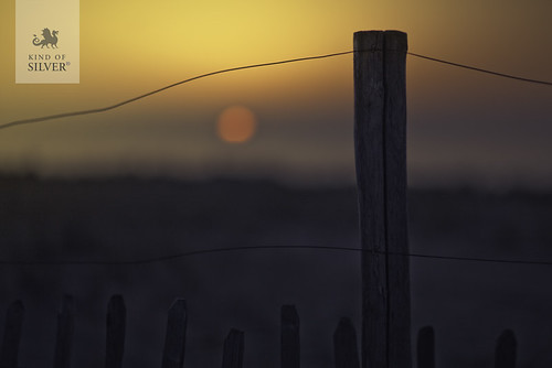 Kind of fenced sunset