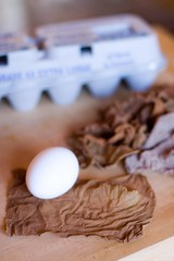 natural dye easter eggs - gear (rosidae) Tags: eastereggs naturaldye howtomake onionskindye