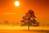 Sunrise colours (mdoors) Tags: micarttttworldphotographyawards micartttt