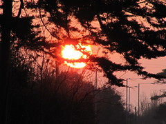 Fire in the sky (wallygrom) Tags: morning england sunrise dawn westsussex eastpreston angmering