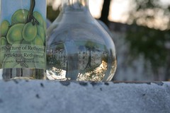 Bottle of Grappa (E-d-i-t-h-a) Tags: bottle fisheye waste grappa fisheyeeffect altglascontainer