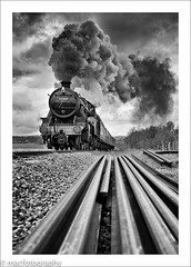 painful............. (4macfotography) Tags: wood trees sky cloud white motion black field train fence landscape track power pov smoke horizon engine meadow rail tunnel steam trail driver locomotive foley exhaust svr 42968