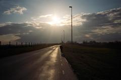 (Levi Mandel (@levimandel)) Tags: road sunset sky film windmill bike 35mm fun ride sweden jonathan magic scan adventure freeway winding gothamist malmö