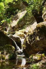 Rhodos00062 (AndiP66) Tags: hellas greece griechenland 2012 rhodos ellada petaloudes andreaspeters