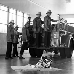 New Arrivals! Engine 21 July 20th,1969
