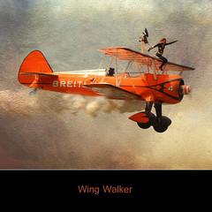 Sky Walker (10000 wishes) Tags: texture flying nikon smoke acrobatics farnborough daredevil biplane breitling wingwalker displayteam