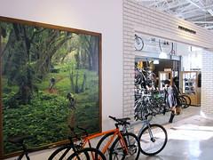 "Series ""Appearance""  Bycycle NEKOMOTO UJINA (jun.skywalker (enishi hand made cyclecap)) Tags: bike bicycle japan hiroshima mtb series appearance roadbike 広島 ujina クロスバイク bycyclenekomoto"