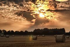 Field (Stopped.) Tags: sunset sun public field clouds canon lenstagged sonnenuntergang straw sonne stroh ballen strohballen 600d canon70200f4 pohlheim