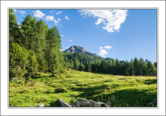 Greetings From South Tyrol (bigmike.it) Tags: panorama mountain tree verde green grass alberi south erba montagna tyrol altoadige