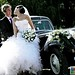 "Mariage Citroën Traction 11 • <a style=""font-size:0.8em;"" href=""https://www.flickr.com/photos/78526007@N08/7844812900/"" target=""_blank"">View on Flickr</a>"