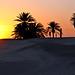 Tunisia-3747 - Sunrise in the Sahara